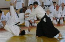 Семинар под руководством японского мастера мирового уровня - сэнсэя Тсунео Андо