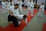 Семинар под руководством Андо Тсунео (Япония, 8 дан Ёсинкан Айкидо) - 2014г.