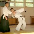 Семинар под руководством Андо Тсунео (Япония, 8-й дан Ёсинкан Айкидо)