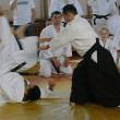Семинар под руководством Андо Тсунео (Ando Tsuneo) (Япония, 8 дан Ёсинкан Айкидо) 2014г.