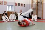 Видео о прошедшем семинаре сэнсэя Кендзи Наказава и сэнсэя Сюдзи Масаки